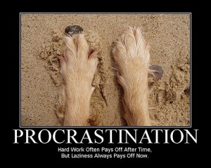 Procrastinate Much?