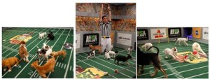 Animal Planet Puppy Bowl IX Giveaway!